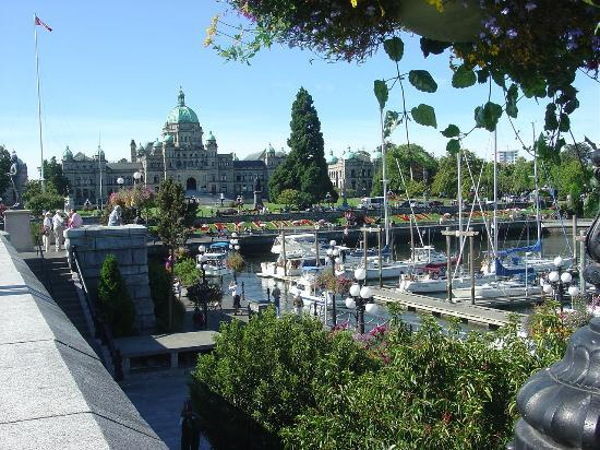 Abbeymoore Manor Bed and Breakfast Inn: And Victoria is gloriously in bloom in summer time!