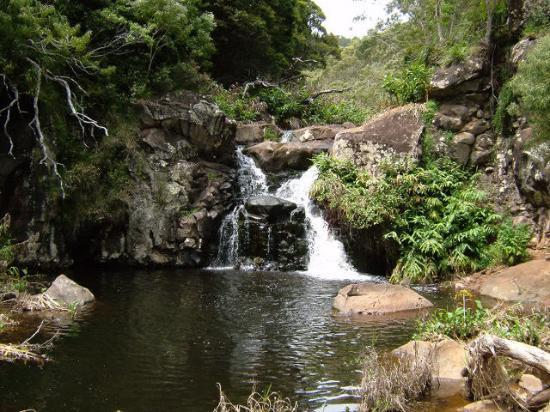 Foto Poipu Kai Resort - Suite Paradise