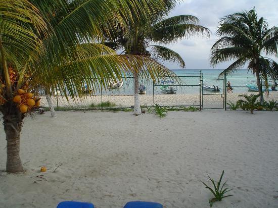 Blue Beach Hotel: the yard outside the villa