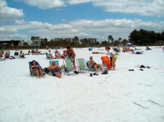Port Charlotte Fl Siesta Key Beach
