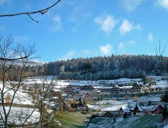 Hotel Dollenberg: hotel in winter