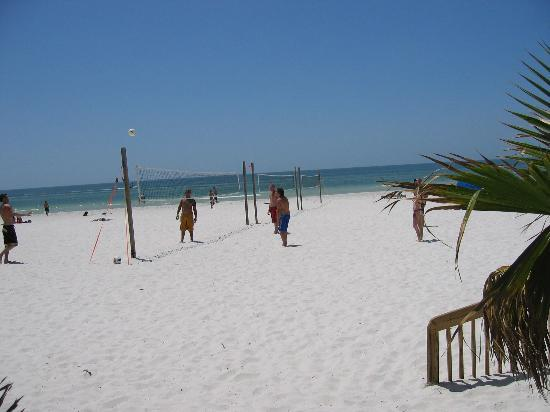 "Beach House Suites by The Don CeSar : ""Volleyball on a awesome beach"""