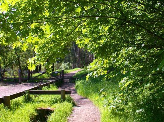 Westwood Hills Park: The Trailhead