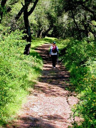 Westwood Hills Park: You can feel miles from civilization