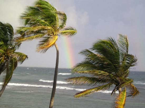 The Palms at Pelican Cove: morning rainbow from the room