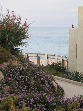 Las Ventanas al Paraiso, A Rosewood Resort : view from garden view room
