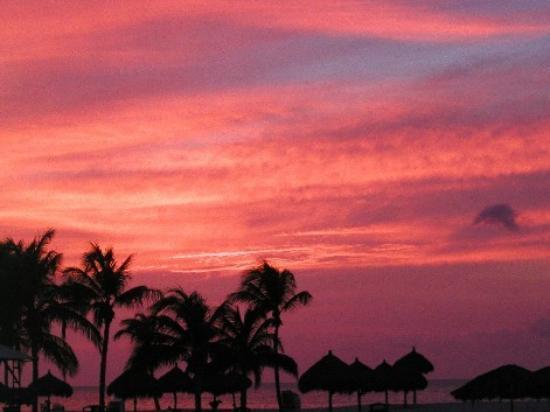 Bucuti & Tara Beach Resort Aruba: Life is a collection of memories