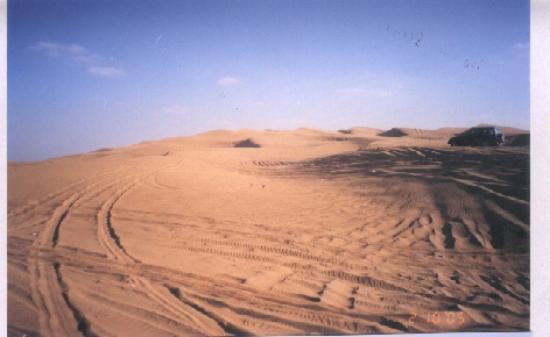 Arabian Adventures: Exciting dune bashing