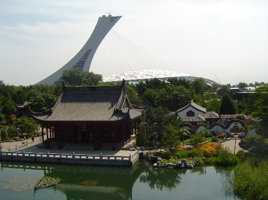 Jardin Botanique de Montreal : Olympic stadium - view from the gardens
