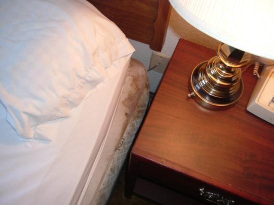 Economy Inn: Stain on mattress looked like dried blood