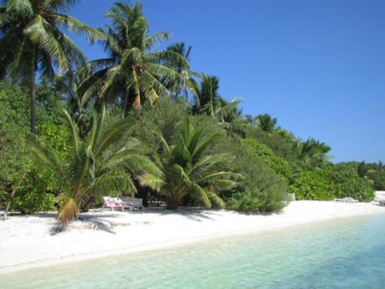Lhohifushi Island: Our private beach - Bliss!