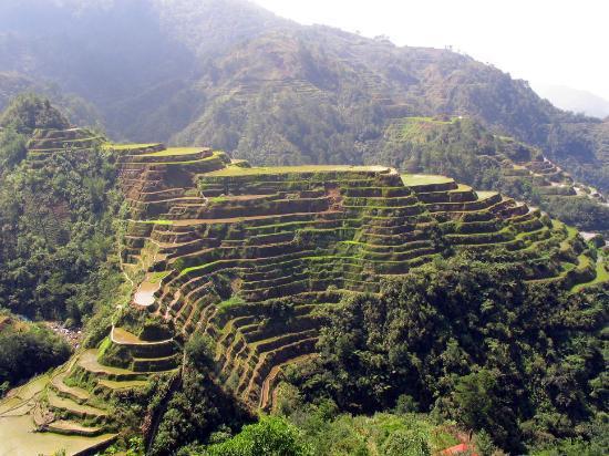 Banaue's Famous Rice Terraces