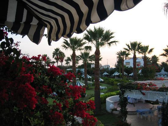 Hasdrubal Thalassa Hotel & Spa Port El Kantaoui: Gardens at dawn