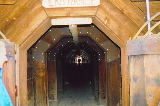 Berkeley Pit: Tunnel