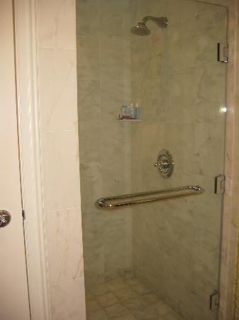 The stand up shower - Picture of The Ritz-Carlton Orlando, Grande ...