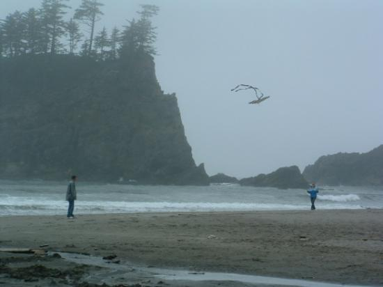 Mora Campground: flying kites at second beach