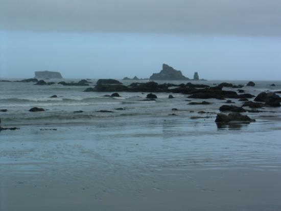 Mora Campground : beautiful rialto at low tide