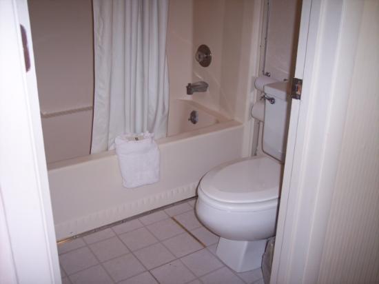 Alcoa Inn: Bathroom Pic