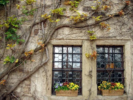Colmberg, Duitsland: Window Flowers