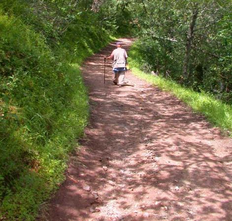 Skyline Wilderness Park : A quiet walk, nearing Lake Marie.