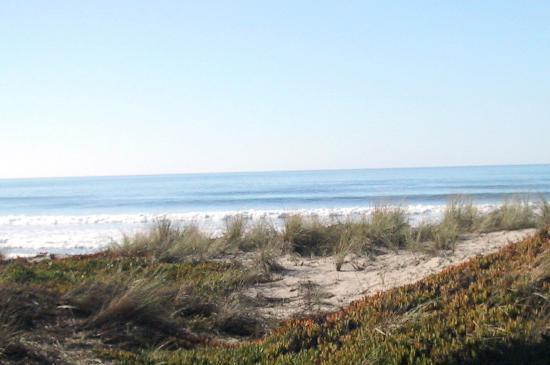 Pajaro Dunes Resort: View from 1st Floor Shorebird