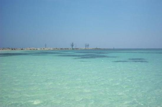 Xanadu Beach : more ocean