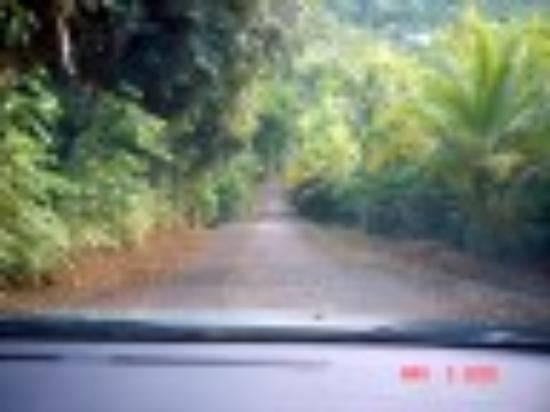 Ceiba Country Inn : A bit hilly of a driveway