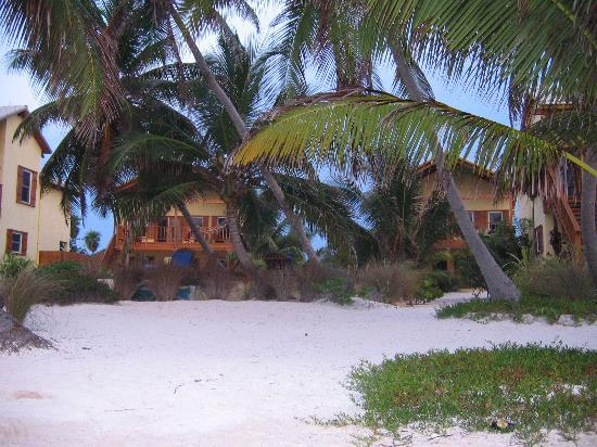 El Pescador Resort: View of villas from beach.