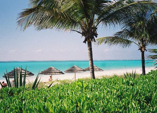 Sibonne Beach Hotel: The beach at Sibonne