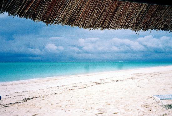 Sibonne Beach Hotel: Under the palapa...