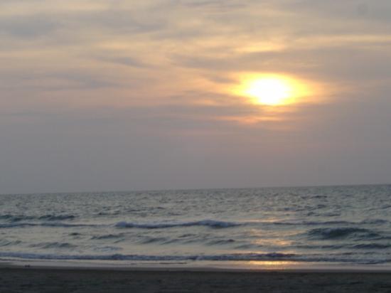 Hotel Charlotte: Beach