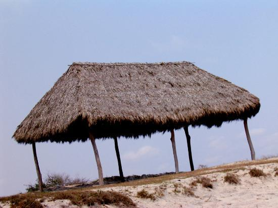 Villa del Palmar Flamingos : Banana hut~