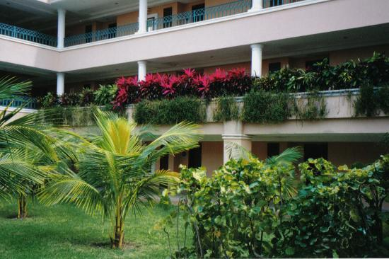 Moon Palace Cancun : plants are everywhere