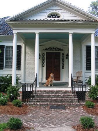 Mansfield Plantation: Our Golden on the Main House Front Porch