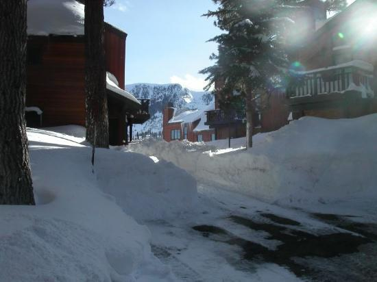 Meadow Ridge Townhomes: Mammoth gets a ton of snow