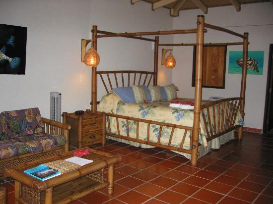 Palm Island Resort & Spa : Our room