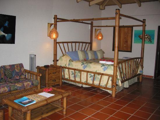 Palm Island Resort & Spa: Our room