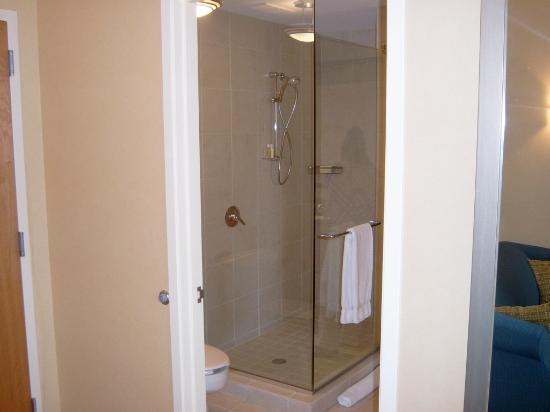 Renaissance Chicago O'Hare Suites Hotel: The Glass Shower