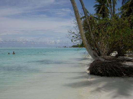 Meeru Island Resort & Spa : paradise