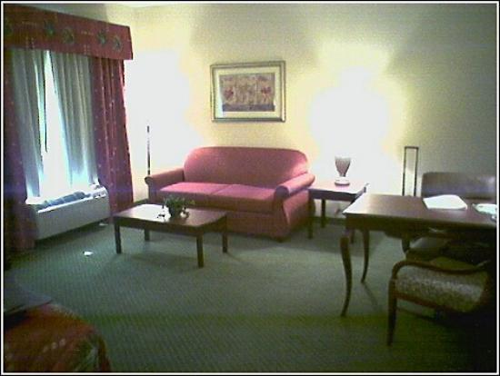 Hampton Inn & Suites Texarkana: Other half of standard king room