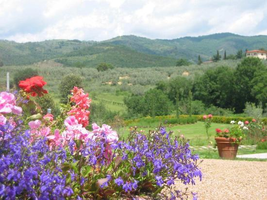 Casa Portagioia - Tuscany Bed and Breakfast: View - One of Many