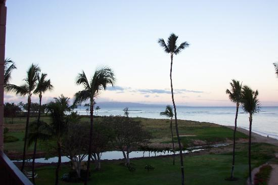 Koa Lagoon: view from the room