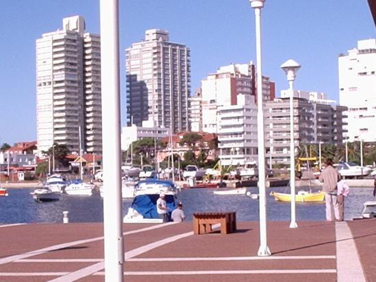 Punta del Este City and yachts