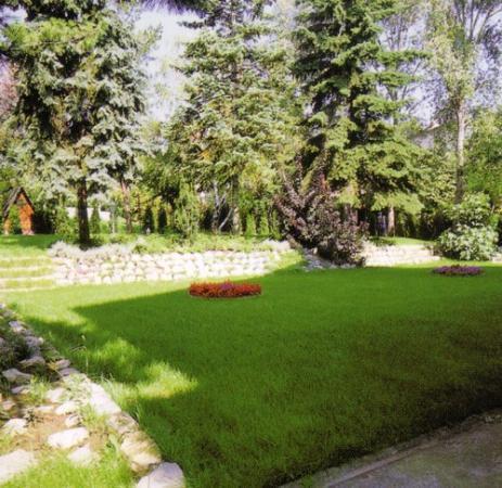 Korona Panzio: Garden Behind Main Building