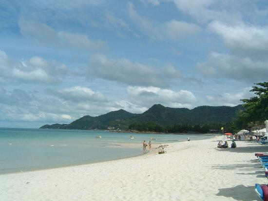 Poppies Samui: Chaweng beach by Poppies