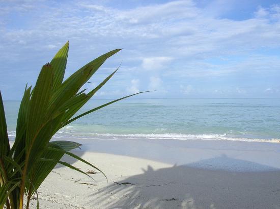 Cocobay Resort: The beach