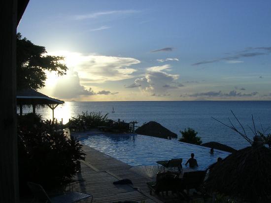 Cocobay Resort: Pool at sunset