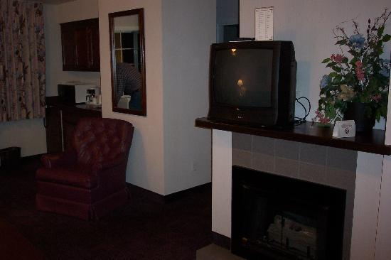 Comfort Inn Mount Shasta Area: TV and wet bar