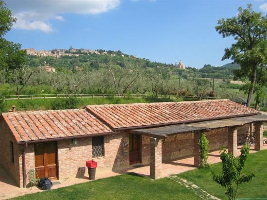 Agriturismo San Gallo: The View from our Room