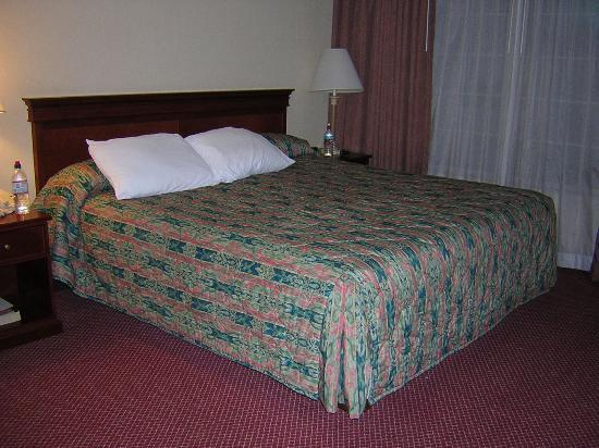 La Quinta Inn & Suites Anaheim Disneyland: Bedroom with king bed (master room)